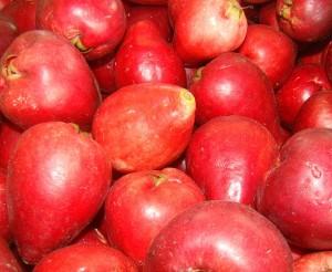 A fruta jambo